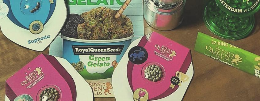 Gratis cannabisfrø og merchandise