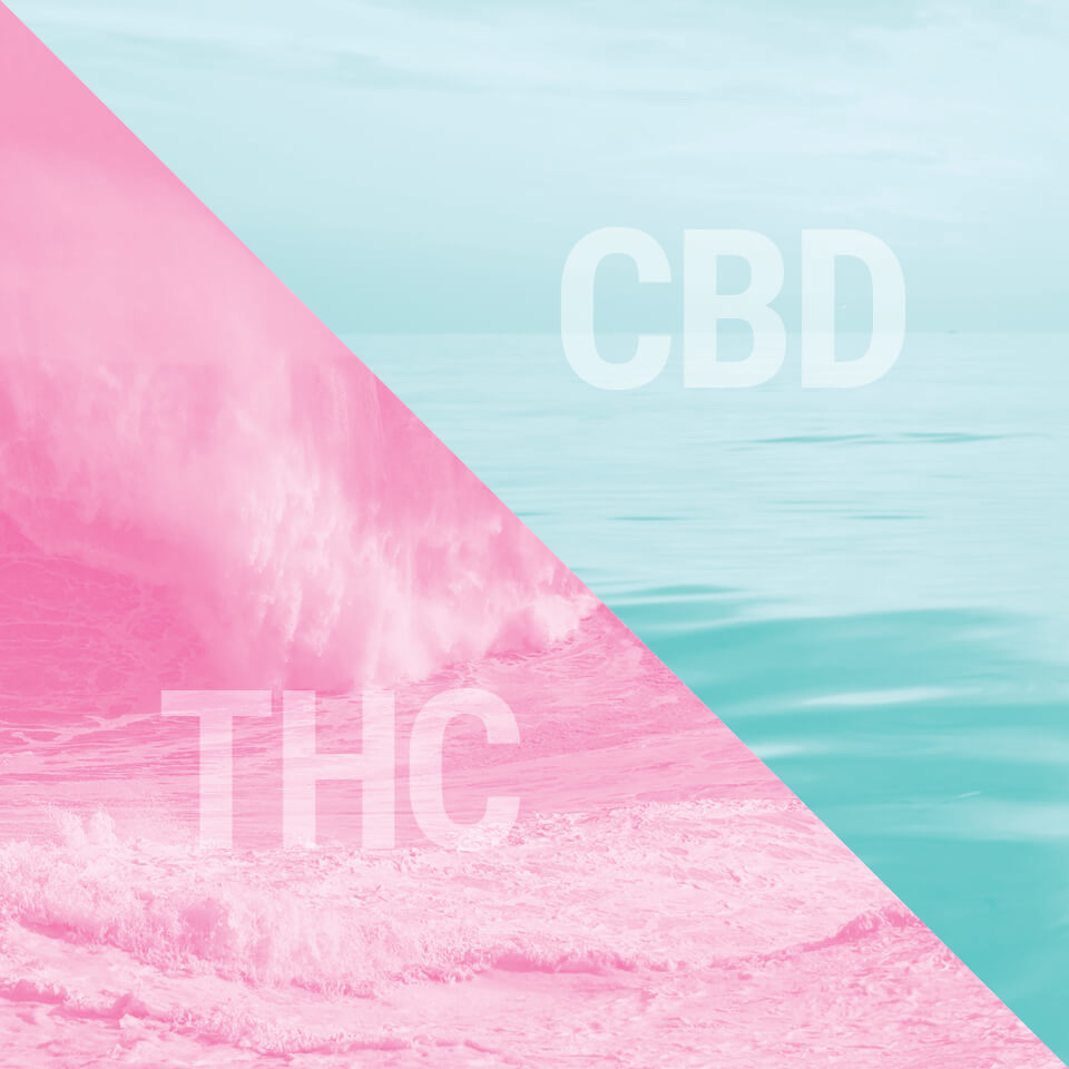 Cannabis Som Medicin